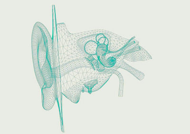 fisioterapia vestibular oido interno
